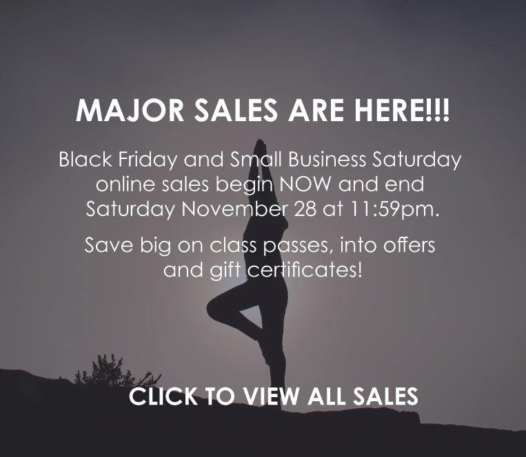Black Friday and Small Business Saturday SALES